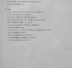 Img_3110